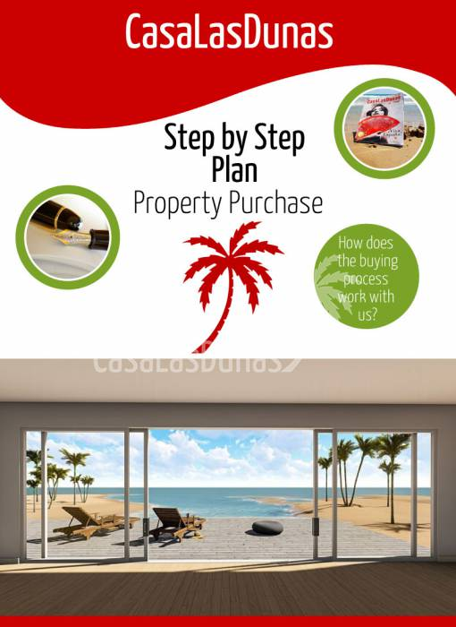 Step by Step Plan